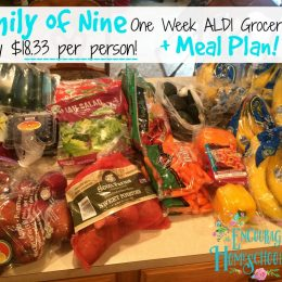Large Family One Week Grocery Haul + Meal Plan { Haul only $165 = $18.33 per person!)