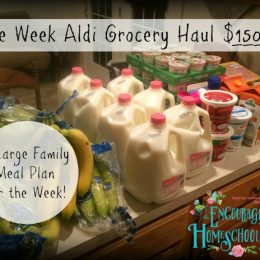 Large Family $150.63 Aldi Grocery Haul + One Week Meal Plan | 5.16.16