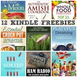 12 KINDLE FREEBIES: The Authentic Amish Cookbook, How to eBay in Real Life + More!