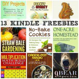 13 KINDLE FREEBIES: Multiplication Math Skills Challenge, No-Bake Cookies + More!