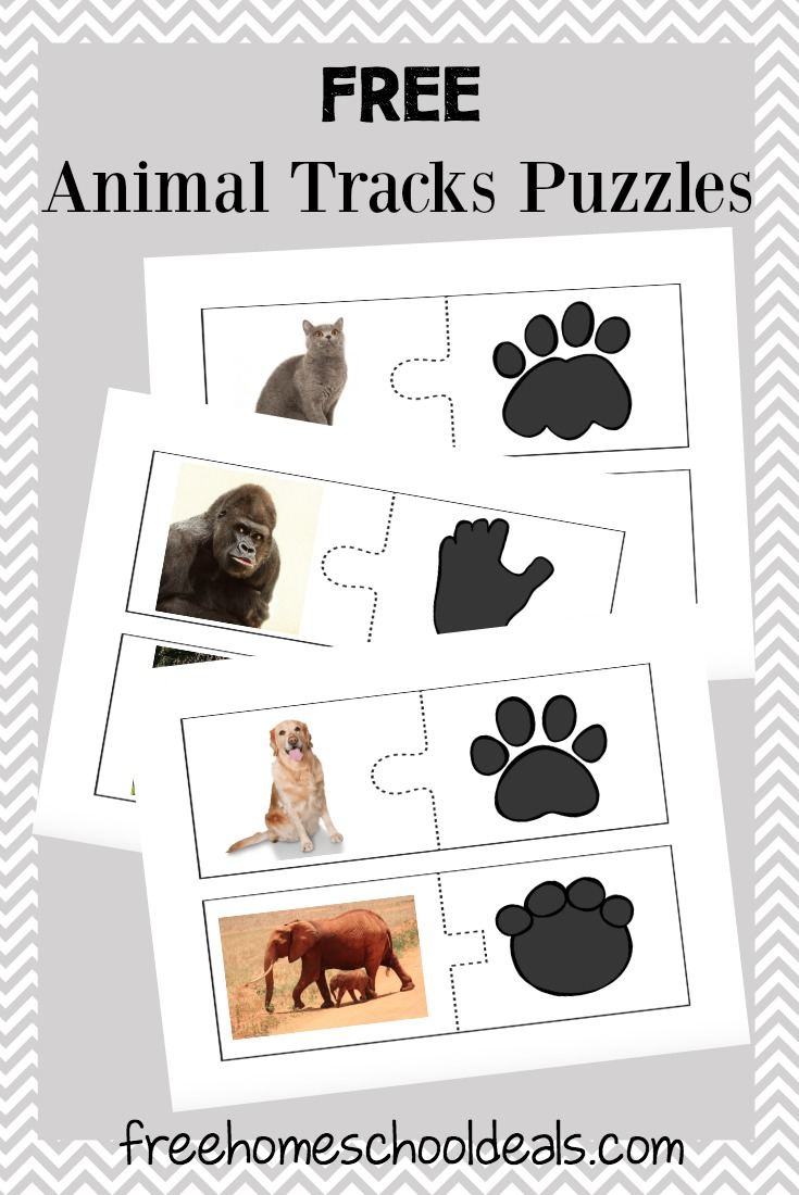 Uncategorized Free Animal Puzzles free animal tracks puzzles instant download homeschool deals
