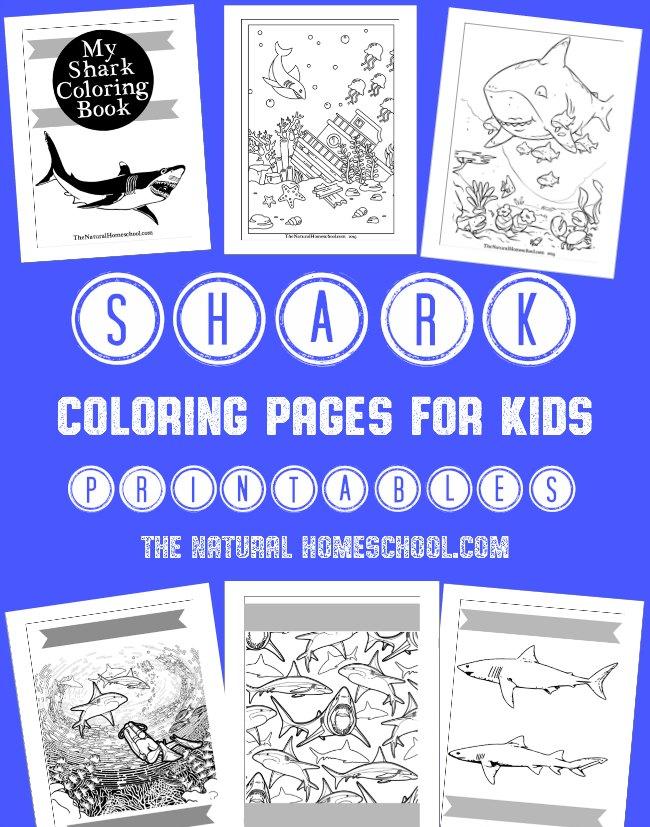 FREE Shark Week Coloring Book Printables