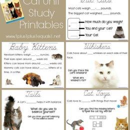 FREE Cat Unit Study