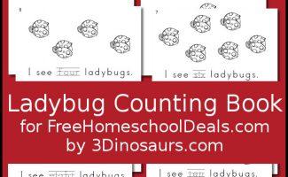 Ladybug Counting Book