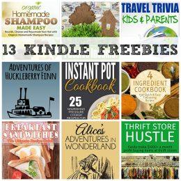 13 KINDLE FREEBIES: Instant Pot Cookbook, Homemade Shampoo Made Easy + More!
