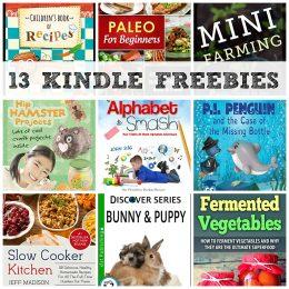 13 KINDLE FREEBIES: Slow Cooker Kitchen, Alphabet Smash + More!