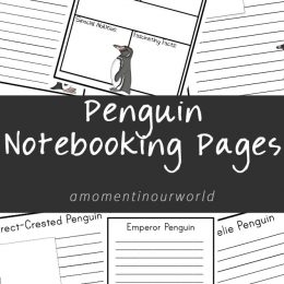 FREE Penguin Notebooking Pages