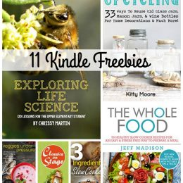11 Kindle Freebies: Seed Saving, Homeschool Life Science Curriculum, How to Draw, Plus More!