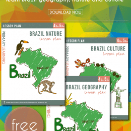 FREE Brazil Lesson Plans (3 Complete Lessons!)