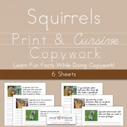 Free Squirrel Facts Copywork