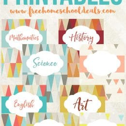 8 FREE SUBJECT BINDER PRINTABLES (Instant Download)