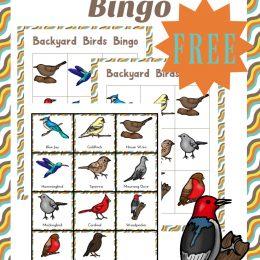 FREE BACKYARD BIRDS PACK (Instant Download)
