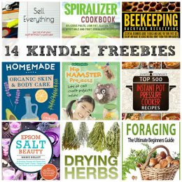 14 KINDLE FREEBIES: 500 Instant Pot Pressure Cooker Recipes, DIY Projects + More!