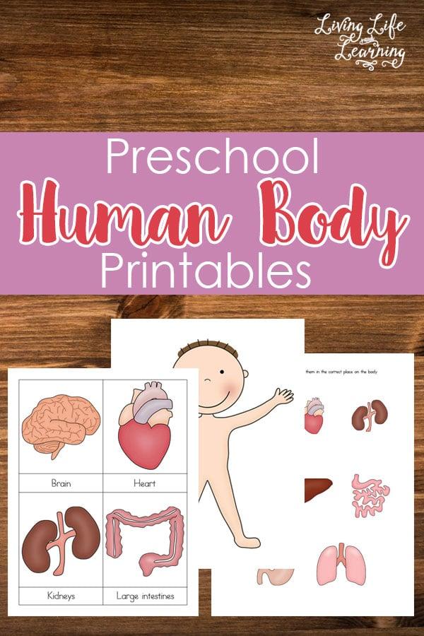 FREE Human Body Pack