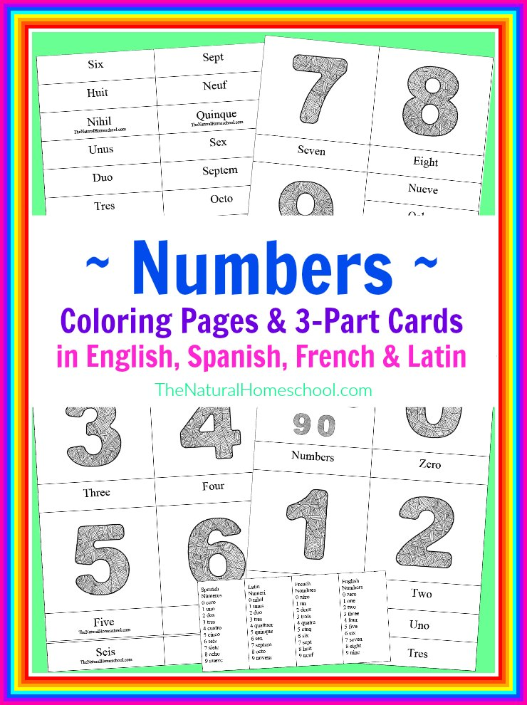 FREE Number Coloring Pages in English