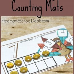 FREE TURKEY THEMED COUNTING MATS (Instant Download)