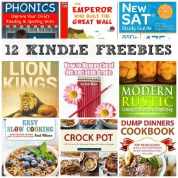 12 KINDLE FREEBIES: How to Homeschool 9th and 10th Grades, Easy Slow Cooking + More!