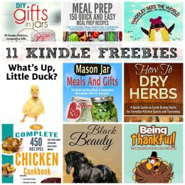 11 KINDLE FREEBIES: Thanksgiving Stories for Children, 150 Quick and Easy Meal Prep Recipes + More!