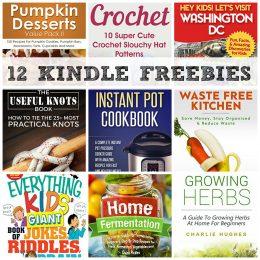 12 KINDLE FREEBIES: Instant Pot Cookbook, Let's Visit Washington DC + More!