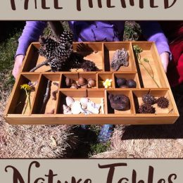 FREE Fall Themed Nature Tables