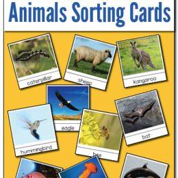 FREE Animal Sorting Cards