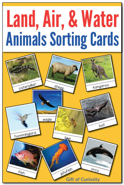 Free Animal Sorting Cards Free Homeschool Deals