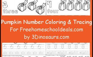 pumpkincolortrace-fhd