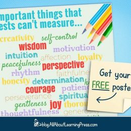 30+ Important Things Tests Can't Measure + Free Poster!