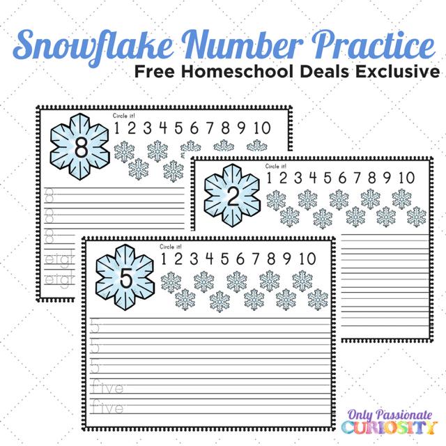 Snowflake Number Practice Worksheets