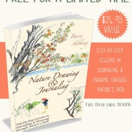 Free Nature Drawing & Journaling Curriculum – Limited Time!