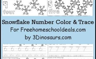 FREE SNOWFLAKE NUMBER COLOR & TRACE PRINTABLES (INSTANT DOWNLOAD)