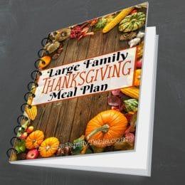 FREE Large Family Thanksgiving Meal Plan!