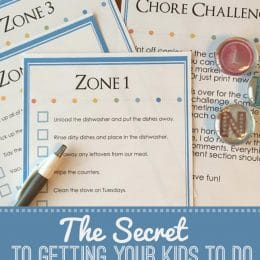Free Chore Challenge Cards & Chart