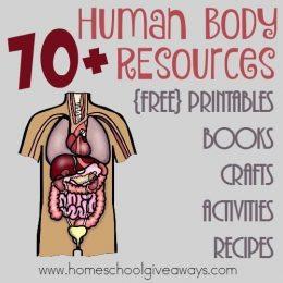 Free Human Body Resources – Printables, Activities, & More!
