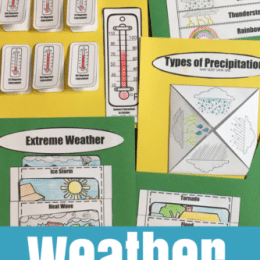 Free Weather Interactive Notebook – Limited Time!