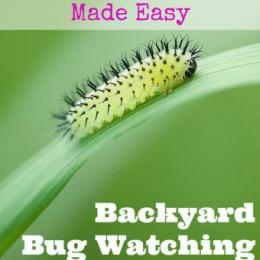 Free Backyard Bug Watching Book