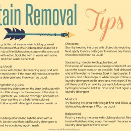 Free Stain Removal Tips Printable