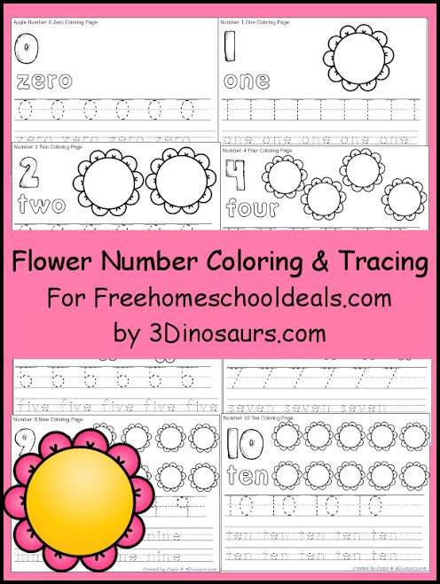 FREE FLOWER NUMBER COLOR & TRACE PRINTABLES (Instant Download)