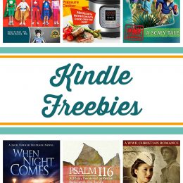 Free Kindle Books: Unplug & Play, Backyard Chickens, When Night Comes, & More!