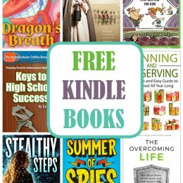 19 Kindle Freebies: Dragon's Breath, American Challenge, Leonardo Da Vinci, & More!