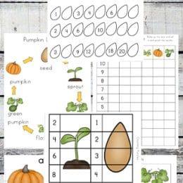 Free Pumpkin Life Cycle Printables