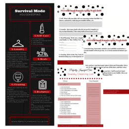 Free Survival Mode Housekeeping Kit