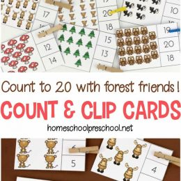 Free Forest Themed Count & Clip Cards