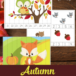 Free Autumn Counting Cards & Puzzles