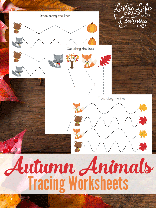 Free Autumn Animals Tracing Worksheets