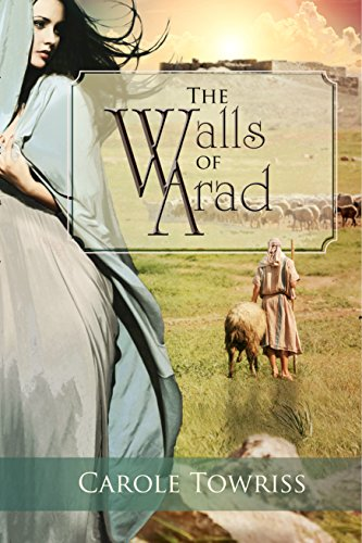 The Walls of Arad