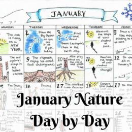 Free January Nature Calendar