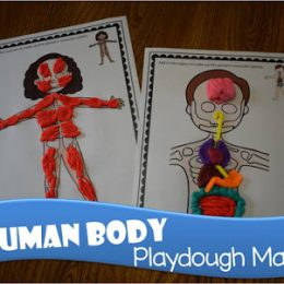 Free Human Body Playdough Mats