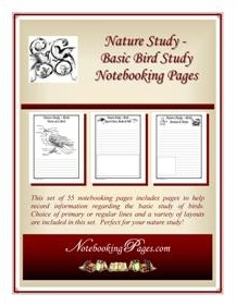 FREE Birds Notebooking Pages
