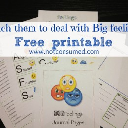 Teaching Children to Deal with Big Feelings Journal Pages